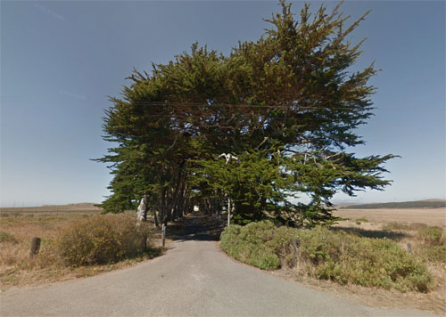 2015 - Cypress Tree Tunnel at Sir Francis Drake Blvd in Point Reyes Station, California USA