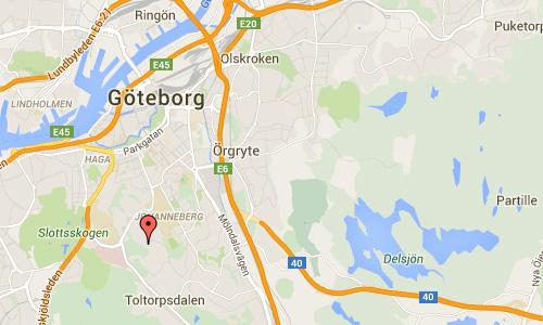 2016 - Dokter Fries torg in Göteborg 01