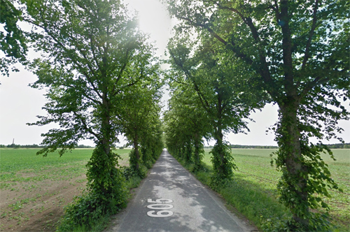 2017 - Road 605 to Roma kloster on Roma Kungsgård in Roma on Gotland (Google Streetview)